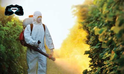شركة رش مبيدات بالكويت،شركة رش أقوى المبيدات لمكافحة الحشرات الكويت،شركة مكافحة الحشرات في الكويت